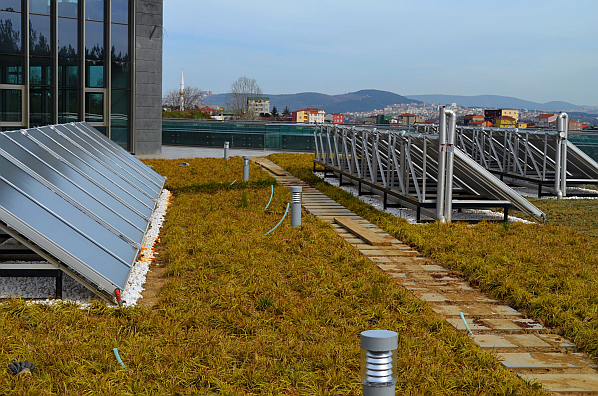 Maxidrain Extensive Green Roof Systems